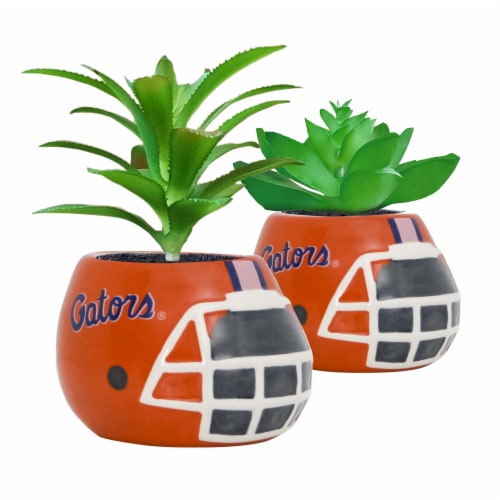 Florida Gators Team Pride Mini Faux Succulents in Ceramic Helmet Planters Perspective: front