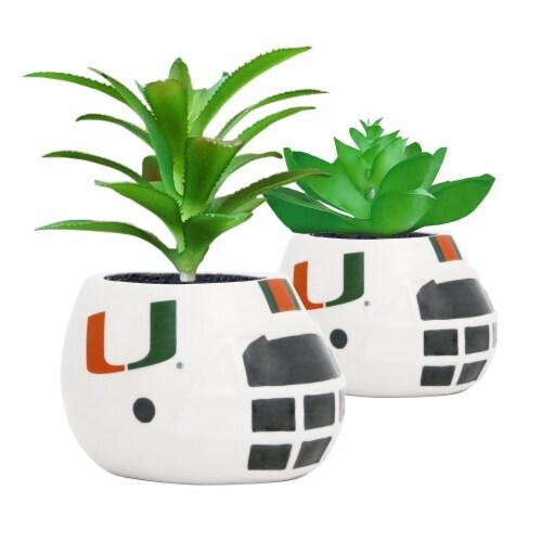 Miami Hurricanes Team Pride Mini Faux Succulents in Ceramic Helmet Planters Perspective: front