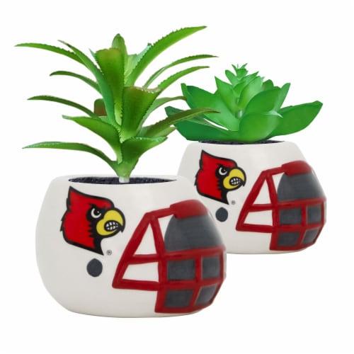 Louisville Cardinals Team Pride Mini Faux Succulents in Ceramic Helmet Planters Perspective: front
