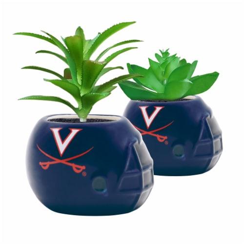Virginia Cavaliers Team Pride Mini Faux Succulents in Ceramic Helmet Planters Perspective: front