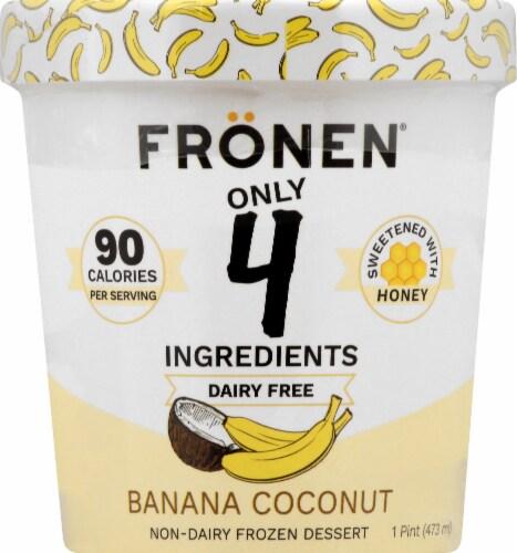 Fronen Banana Coconut Non-Dairy Frozen Dessert Perspective: front