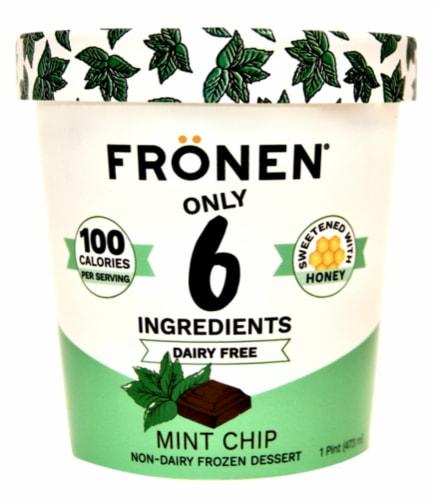 Fronen Dairy Free Mint Chip Dessert Perspective: front