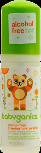 Babyganics the Germinator: Tangerine Foaming Hand Sanitizer Perspective: front