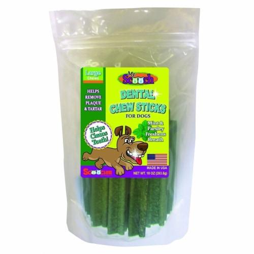 Scoochie Pet Products 803 Dental Chews 10 oz., Mint Large Perspective: front