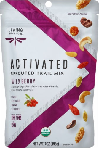 Living Intentions Activated Sprouted Wild Berry Trail Mix Perspective: front