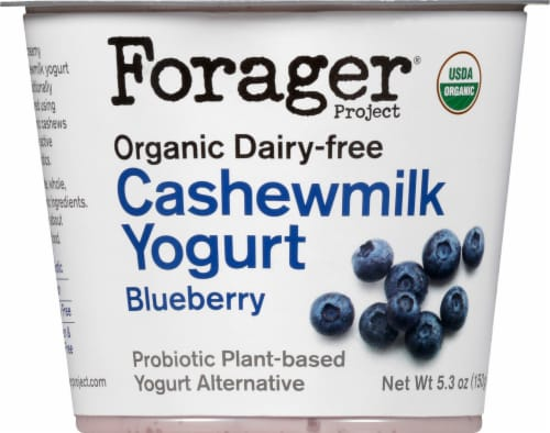 Forager Project Organic Dairy-Free Blueberry Cashewmilk Yogurt Alternative Perspective: front
