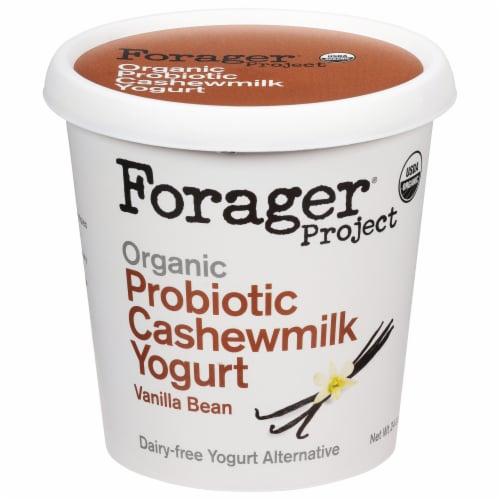 Forager Project Organic Dairy-Free Vanilla Cashewmilk Plant-Based Yogurt Perspective: front