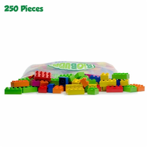 BiOBUDDi 250 Blocks Assorted Set Perspective: front