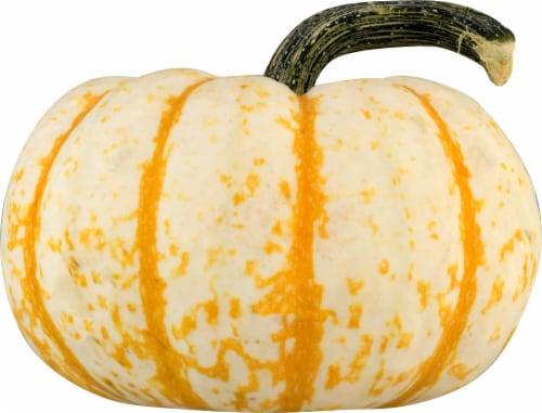 Pumpkin Patch Pals Tiger Stripe Ornamental Pumpkin Perspective: front