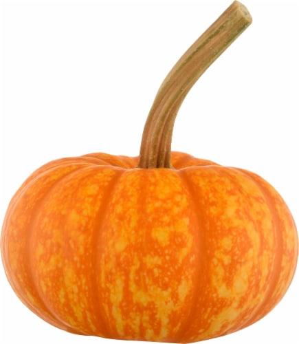 Pumpkin Patch Pals Orange Sparkler Ornamental Pumpkin Perspective: front