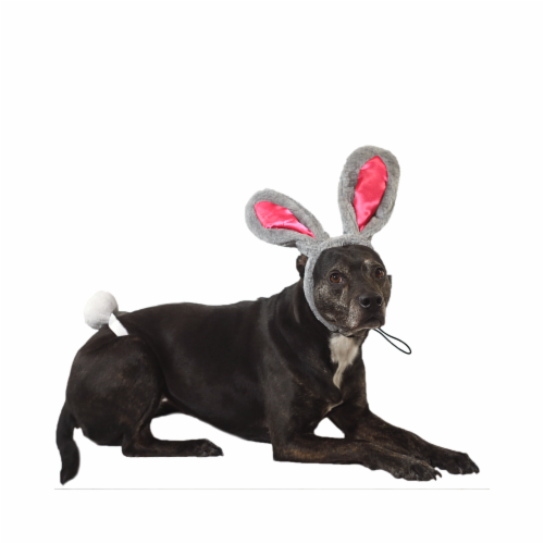 Midlee Easter Bunny Gray & Pink Rabbit Ears for Large Dogs Headband With Tail Perspective: front