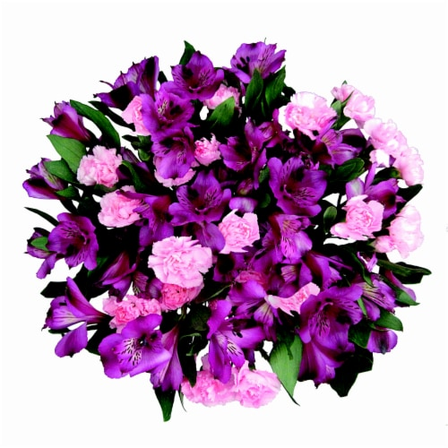 Mini Novelty Carnations Perspective: front