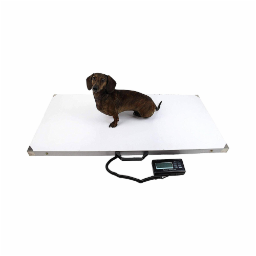 Midlee Dog Stainless Steel Pet Scale 43 x20 , 660lb limit Perspective: front