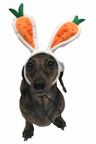 Midlee Carrot Bunny Ears Easter Dog Headband Costume (Large) Perspective: front