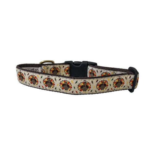 Midlee Thanksgiving Turkey Buckle Dog Collar- Made in The USA (Large) Perspective: front