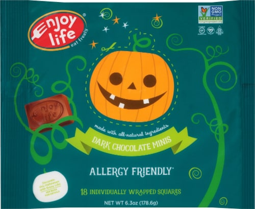 Enjoy Life Allergy-Friendly Dark Chocolate Mini Squares Perspective: front