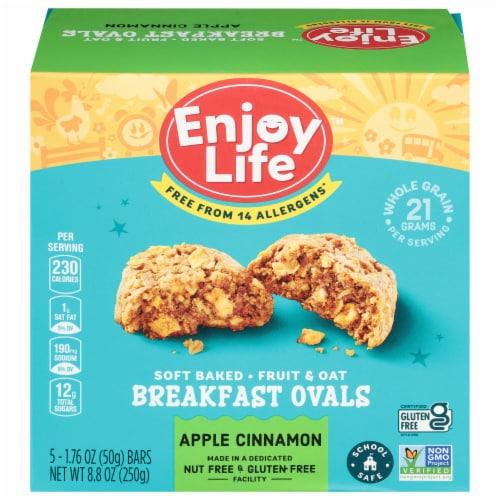 Enjoy Life Gluten-Free Apple Cinnamon Breakfast Ovals Perspective: front