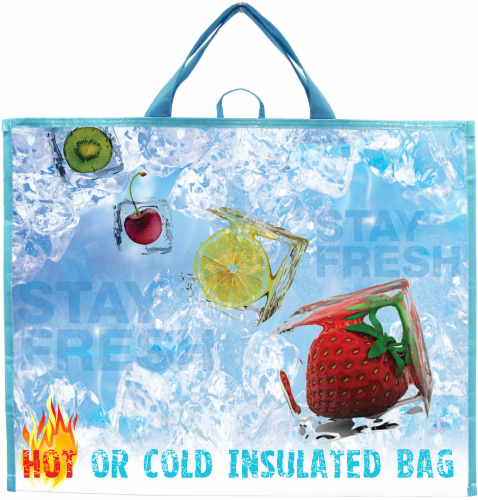 Earthwise Hot and Cold Insulated Bag - Blue/Red Perspective: front