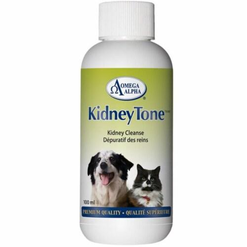 Omega Alpha 451155 4 oz Kidney Tone Detoxification Formula Perspective: front