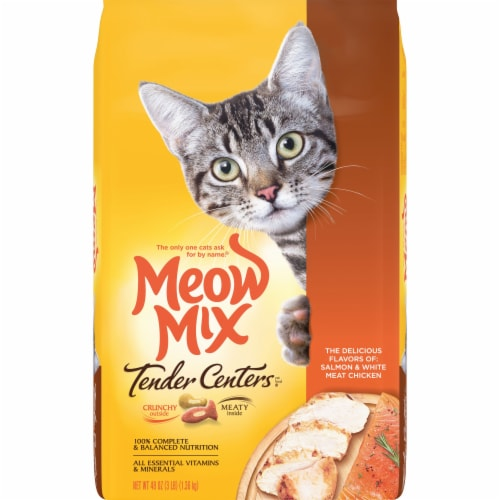 Meow Mix Tender Centers Salmon and Chicken Dry Cat Food Perspective: front