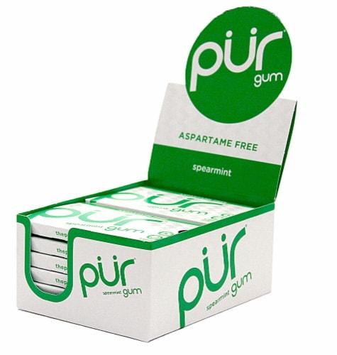 Pur Gum Spearmint Gum Perspective: front