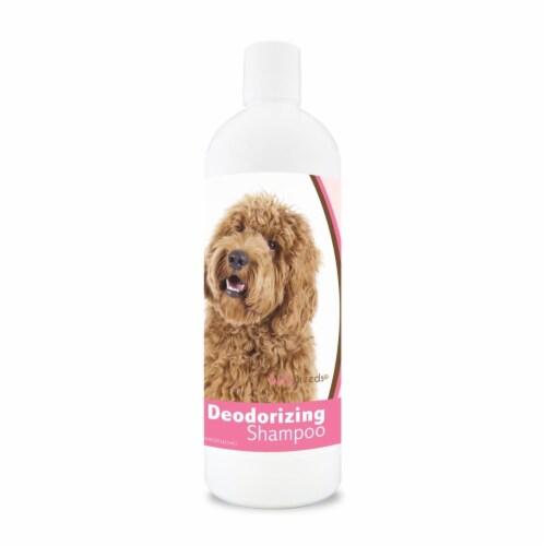 Healthy Breeds 840235110095 16 oz Labradoodle Deodorizing Aloe Shampoo Perspective: front