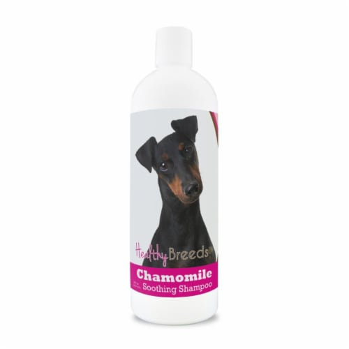 Healthy Breeds 840235199328 8 oz Manchester Terrier Chamomile Soothing Dog Shampoo Perspective: front