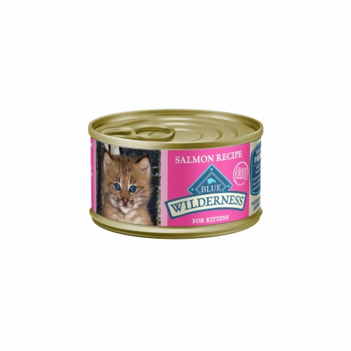 Blue Wilderness Salmon Recipe Wet Kitten Food Perspective: front