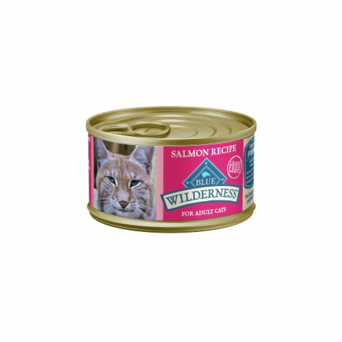 Blue Buffalo Wilderness Salmon Recipe Wet Cat Food Perspective: front
