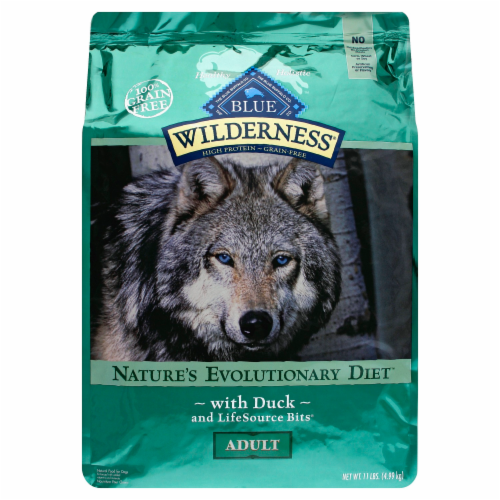 Blue Wilderness Duck Adult Dry Dog Food Perspective: front