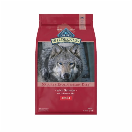 Blue Wilderness Salmon Dry Adult Dog Food Perspective: front