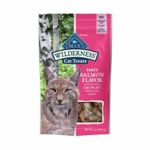 Blue Wilderness Salmon Flavor Crunchy Cat Treats Perspective: front