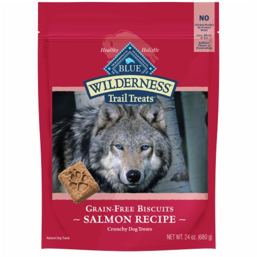 Blue Wilderness Trail Treats Salmon Recipe Grain-Free Biscuits Crunchy Dog Treats Perspective: front