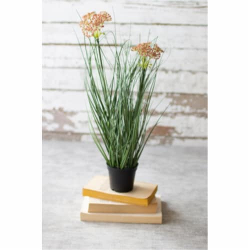 Set Of 6 Artificial Potted Onion Grass With Two Flowers 3 D X 18 T Perspective: front