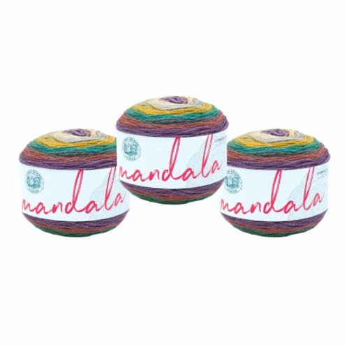 Lion Brand Yarn Mandala Yarn - Warlock Perspective: front