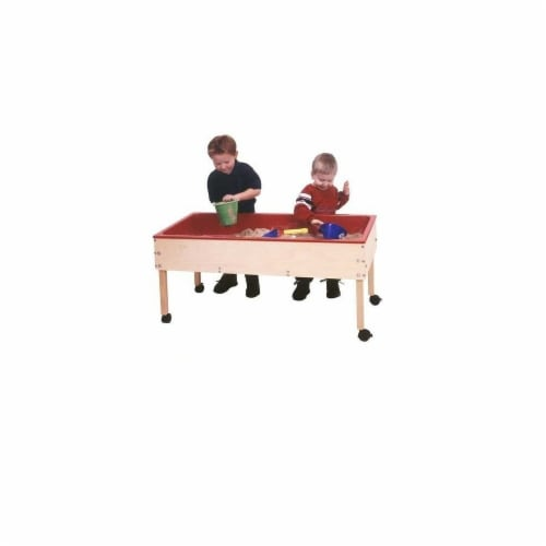 Angeles ANG1032T Toddler Sand & Water Brich Table with Top - 24 x 45 x 20 in. Perspective: front