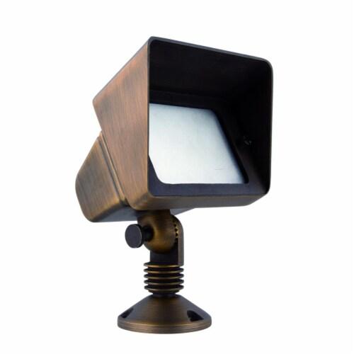 Elitco Lighting C048V1 Antique Brass Flood Light Perspective: front