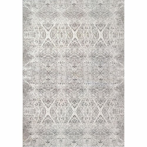 Dynamic Rugs ZN288344900 Zen 2 ft. 2 in. x 7 ft. 7 in. Grey Area Rug Perspective: front