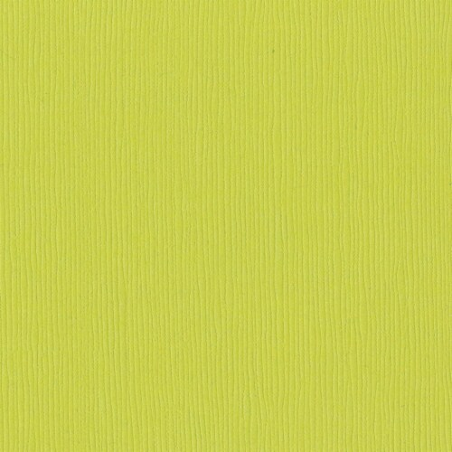 Bazzill Fourz Cardstock 12 X12 -Granny Smith/Grasscloth Perspective: front