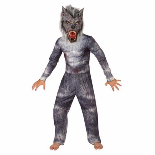 Costumes For All Occasions LF3681BSM Werewolf Child Small 4-6 Perspective: front