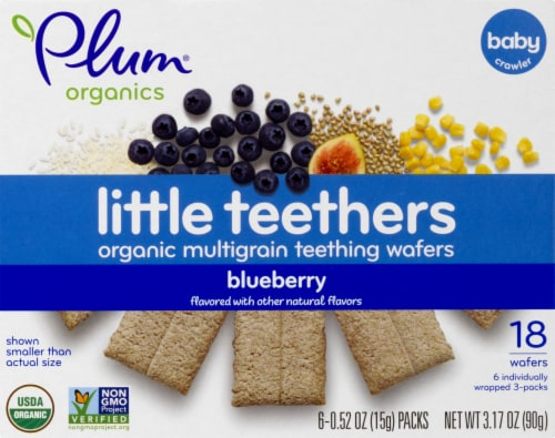 Plum Organics Blueberry Little Teethers Perspective: front