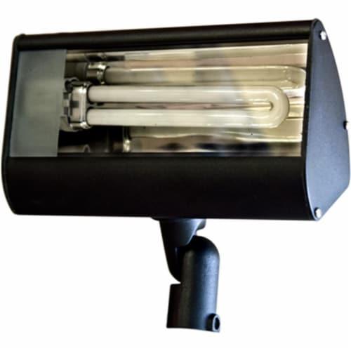 Dabmar Lighting DF5970-B Cast Aluminum Area Flood Light, Black Perspective: front