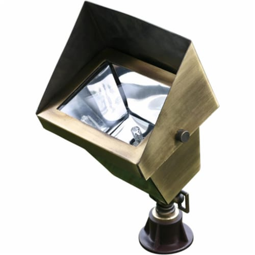 Dabmar Lighting LV117-ABS Solid Brass Area Flood Light with Hood, Antique Brass Perspective: front