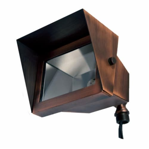 Dabmar Lighting LV117-ABZ Solid Brass Area Flood Light with Hood, Antique Bronze Perspective: front