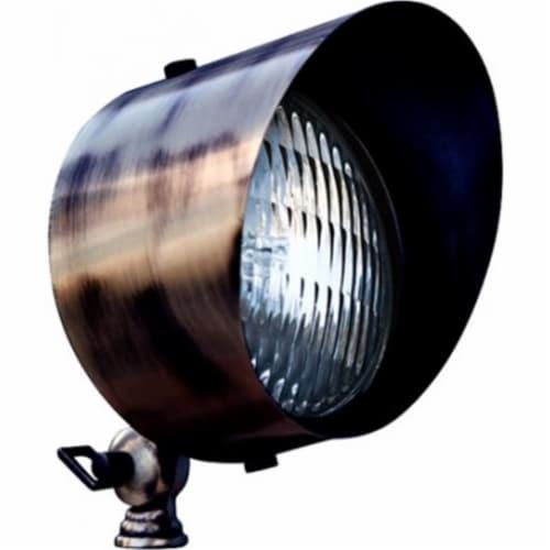 Dabmar Lighting LV30-LED6-ABZ 6W & 12V LED PAR36 Solid Brass Spot Light - Antique Bronze Perspective: front