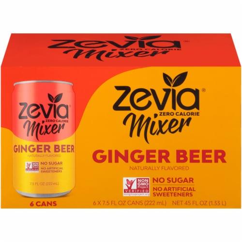 Zevia Zero Calorie Mixer Ginger Beer 6 Count Perspective: front