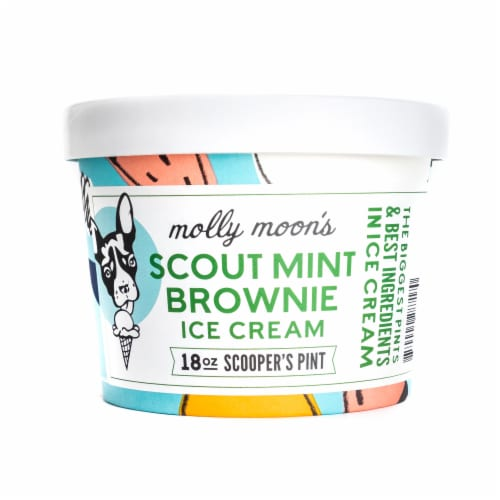 Molly Moon's Scout Mint Brownie Ice Cream Perspective: front