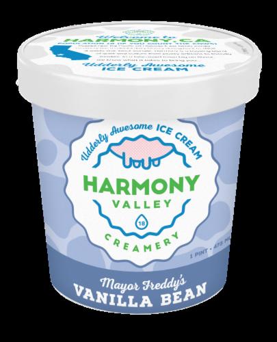 Harmony Valley Creamery Mayor Freddy's Vanilla Bean Ice Cream Perspective: front