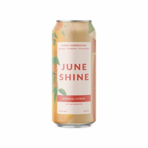 JuneShine Hopical Citrus Hard Kombucha Perspective: front