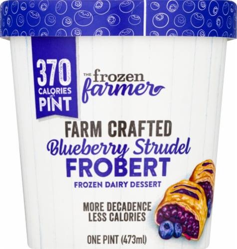 The Frozen Farmer Blueberry Strudel Frobert Frozen Dairy Dessert Perspective: front